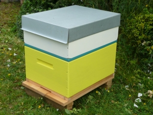 A Rentahive Yellow brood box with a cream honey box