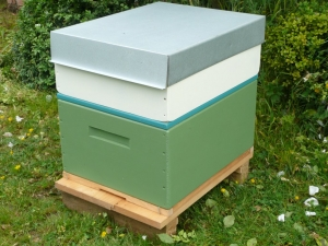 A Rentahive Green brood box with  cream honey box