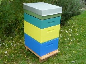 Our Rentahive colours as a taller hive