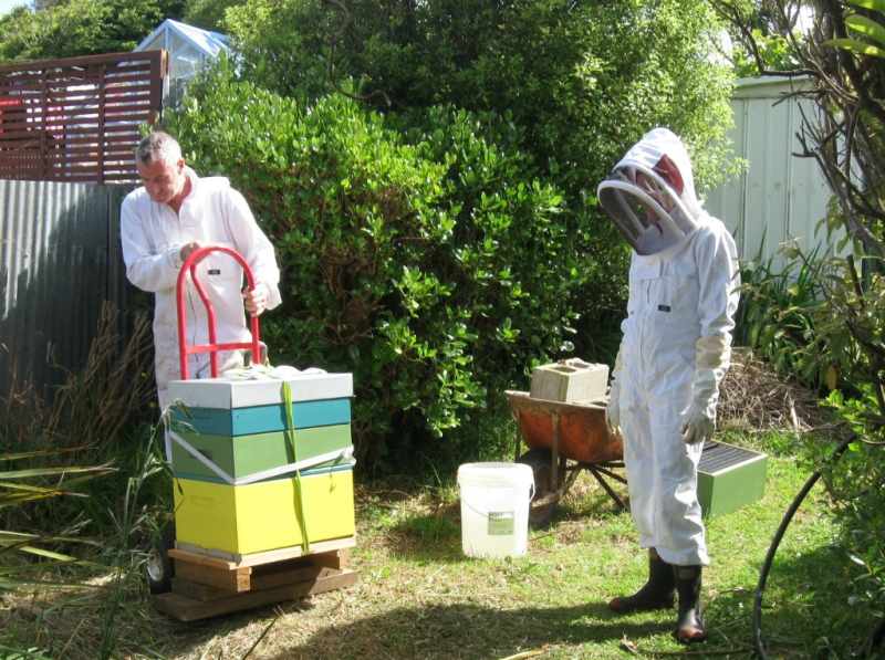 Delivery of a Yellow hive